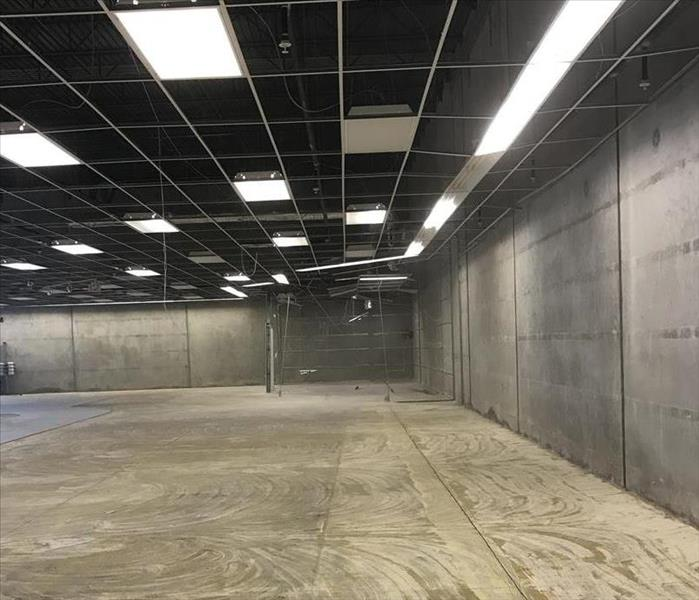 Retail Store Mold Remediation After